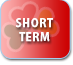 shortterm_icon
